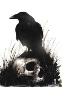 raven-skull2